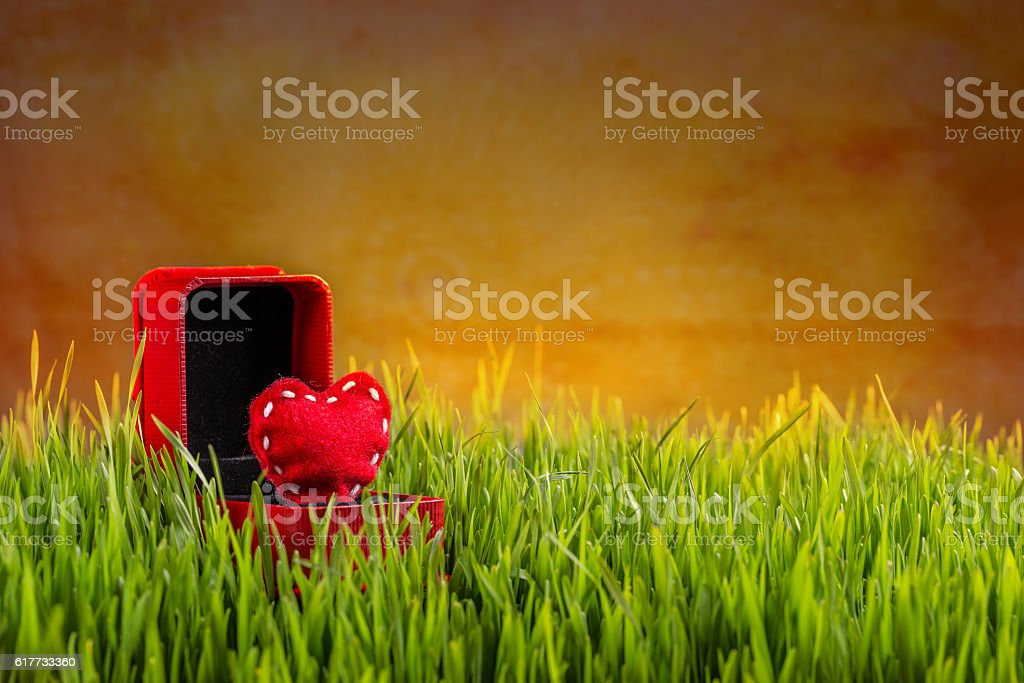 Love concept. stock photo