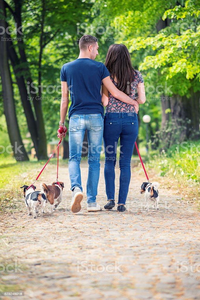 Love couple with their dogs in the park stock photo