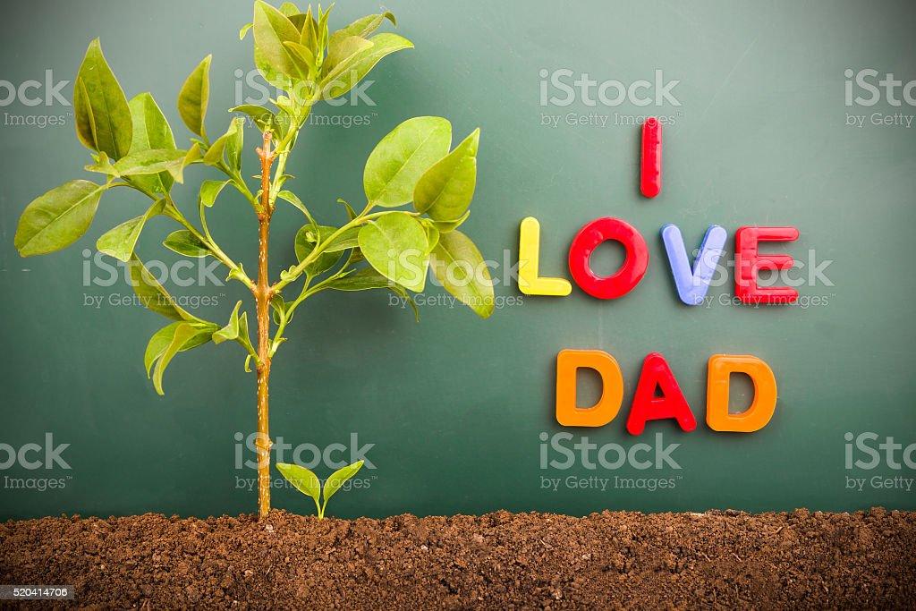 I love DAD:bud and tree before blackboard stock photo