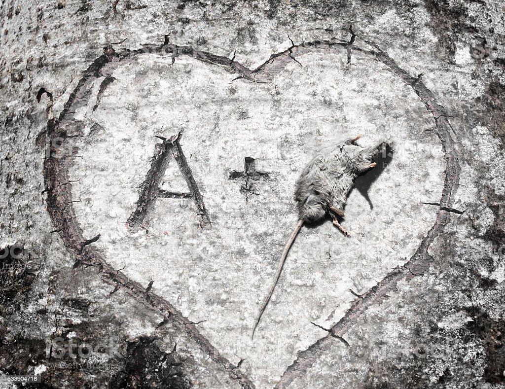 Love is Dead stock photo