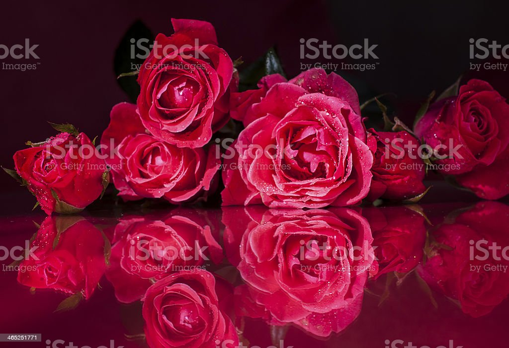 Love is in the air!! royalty-free stock photo