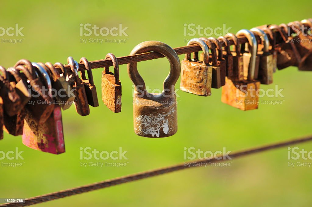Love Locks on a brigde on a green background stock photo