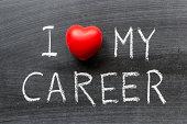 love my career