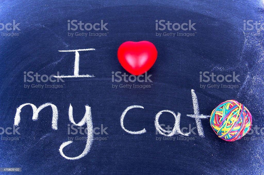 I Love My Cat stock photo