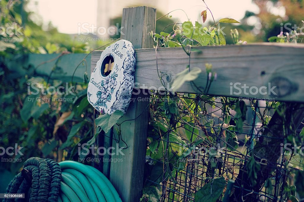 Love My Garden wood wire fence green plants water hoses stock photo