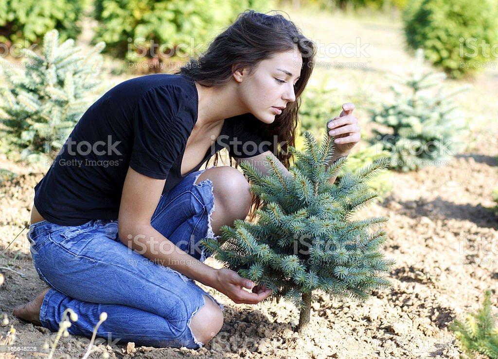 I Love Nature royalty-free stock photo