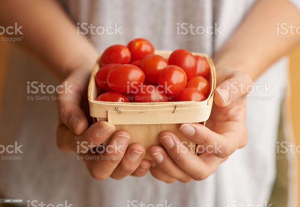 I love organic from my head tomatoes stock photo