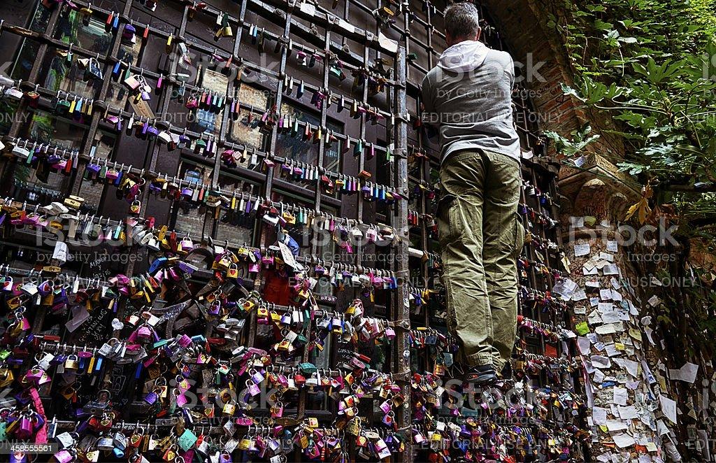 Love padlocks. Color Image royalty-free stock photo