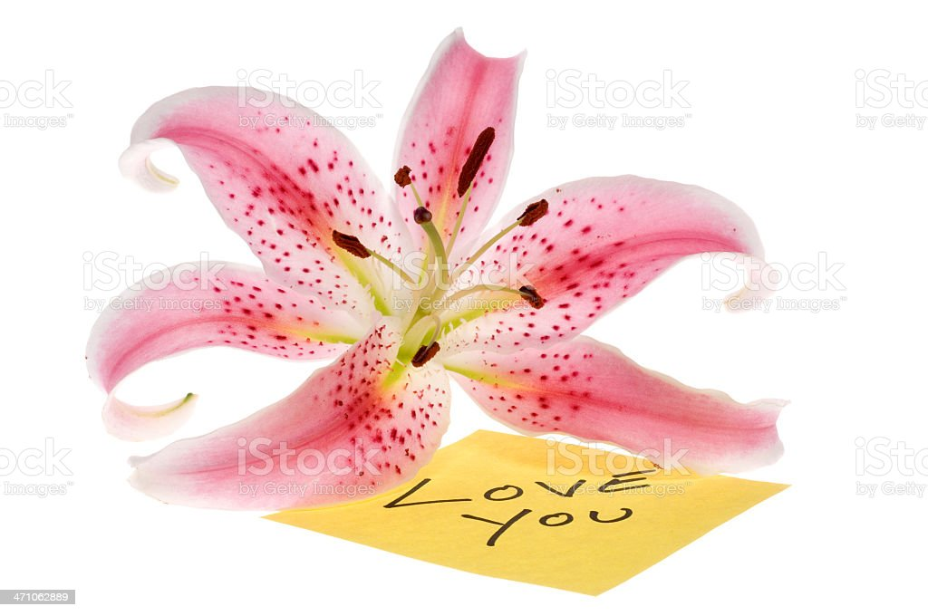 Love Post-it Note and lilly flower royalty-free stock photo