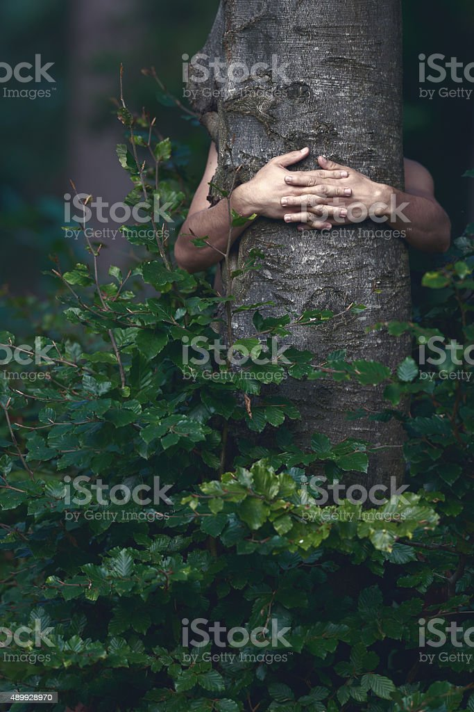 love the nature and it's beauty stock photo