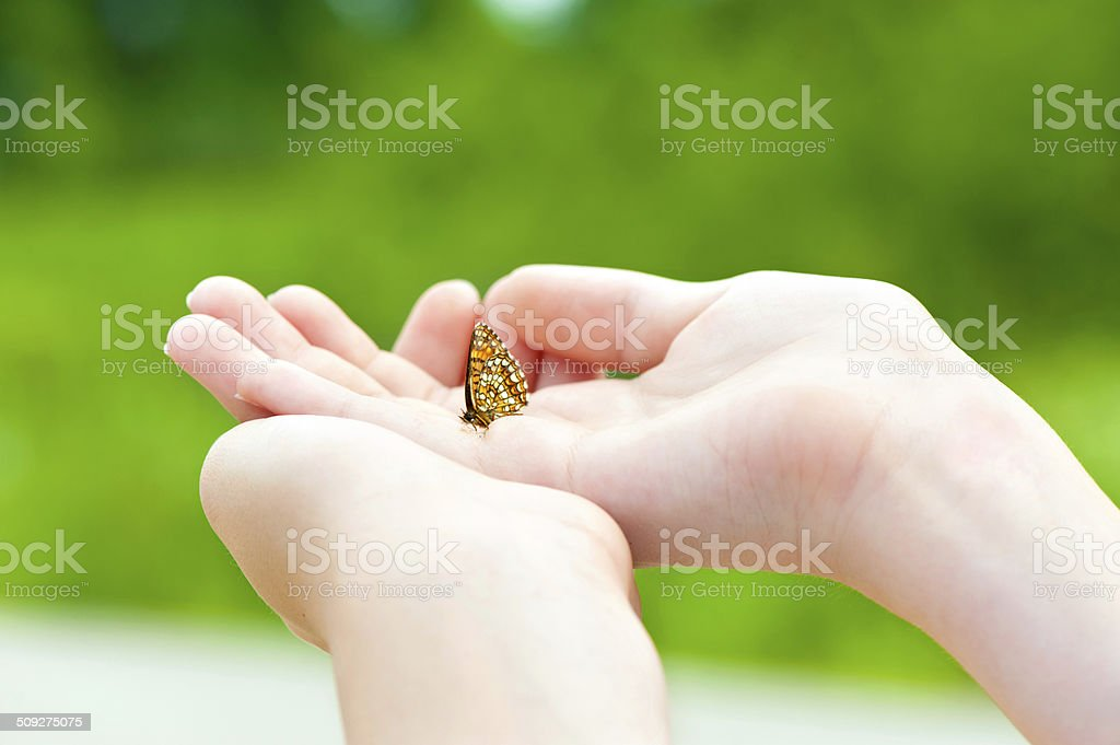 Love the nature. Girl hands holding a small butterfly. royalty-free stock photo