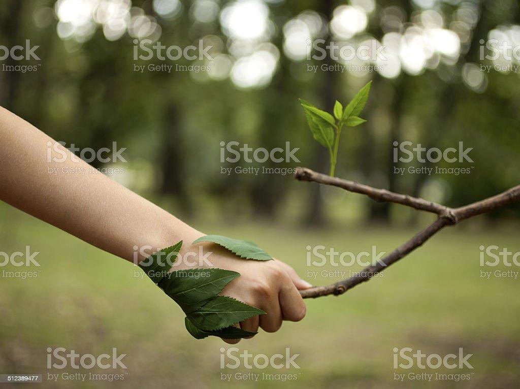 Love The Nature stock photo