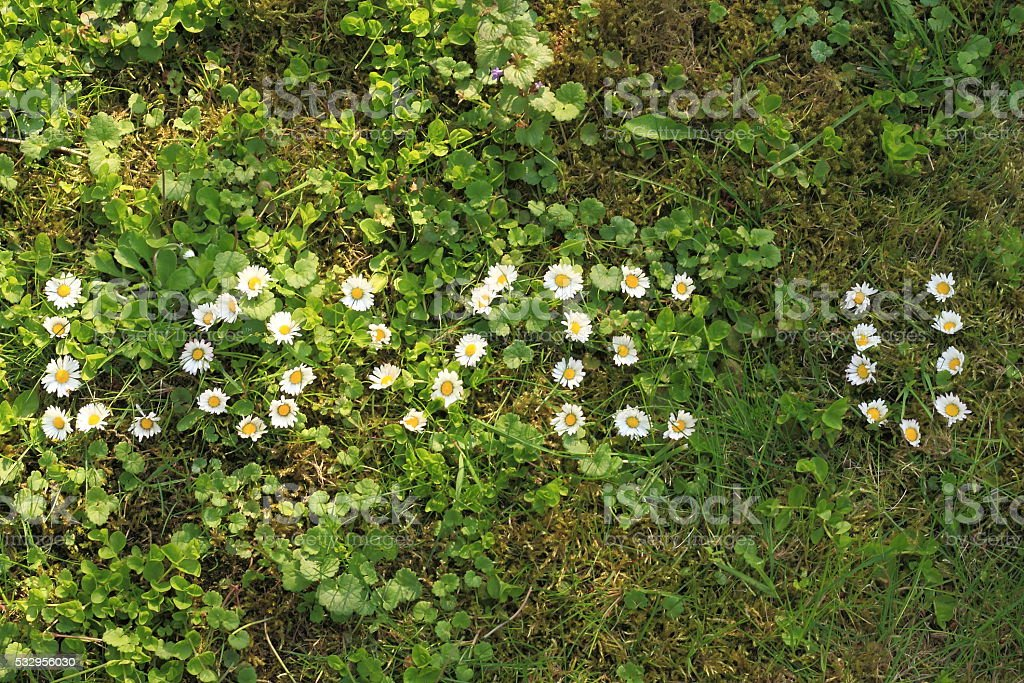 Love u sign made of daisy flowers stock photo