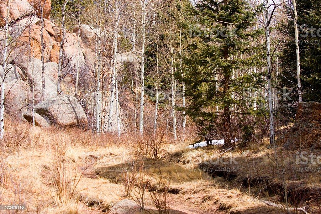 Lovell Gulch Trail stock photo