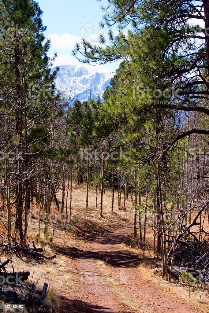 Lovell Gulch Trail royalty-free stock photo