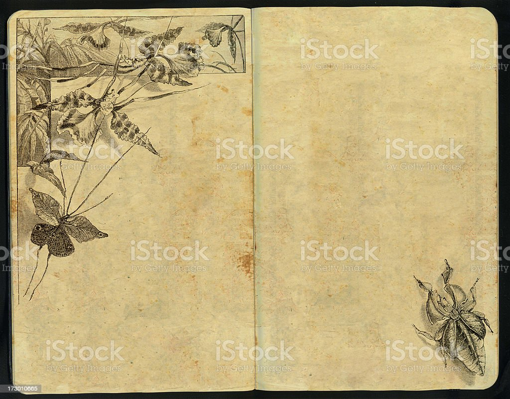 Lovely bugs Sketch Pad royalty-free stock photo