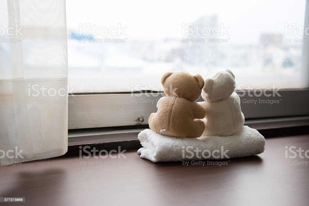 Lovely couple bear sit together look out window stock photo