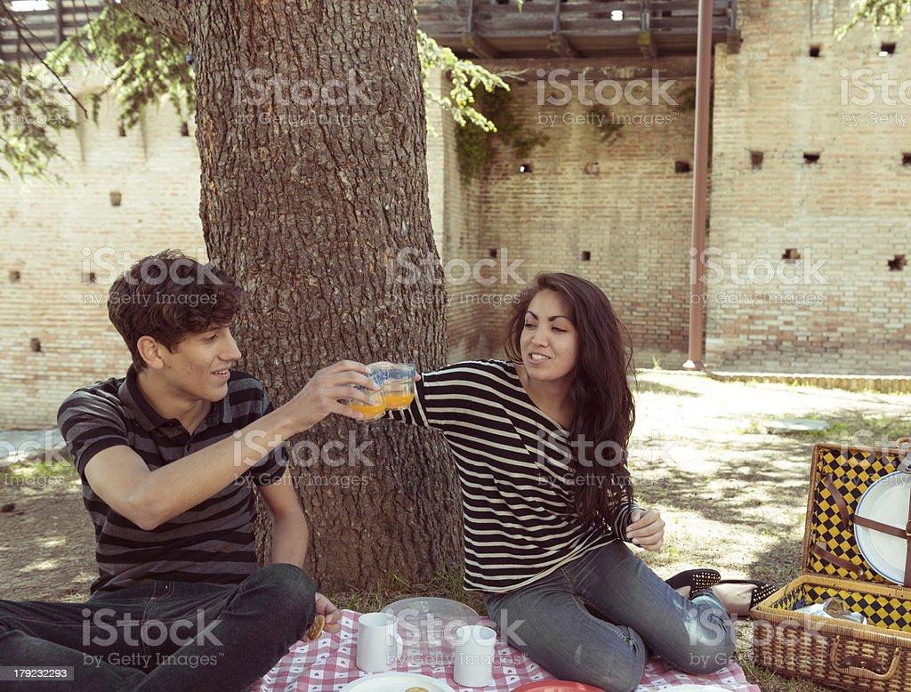 Lovely couple having a picnic stock photo