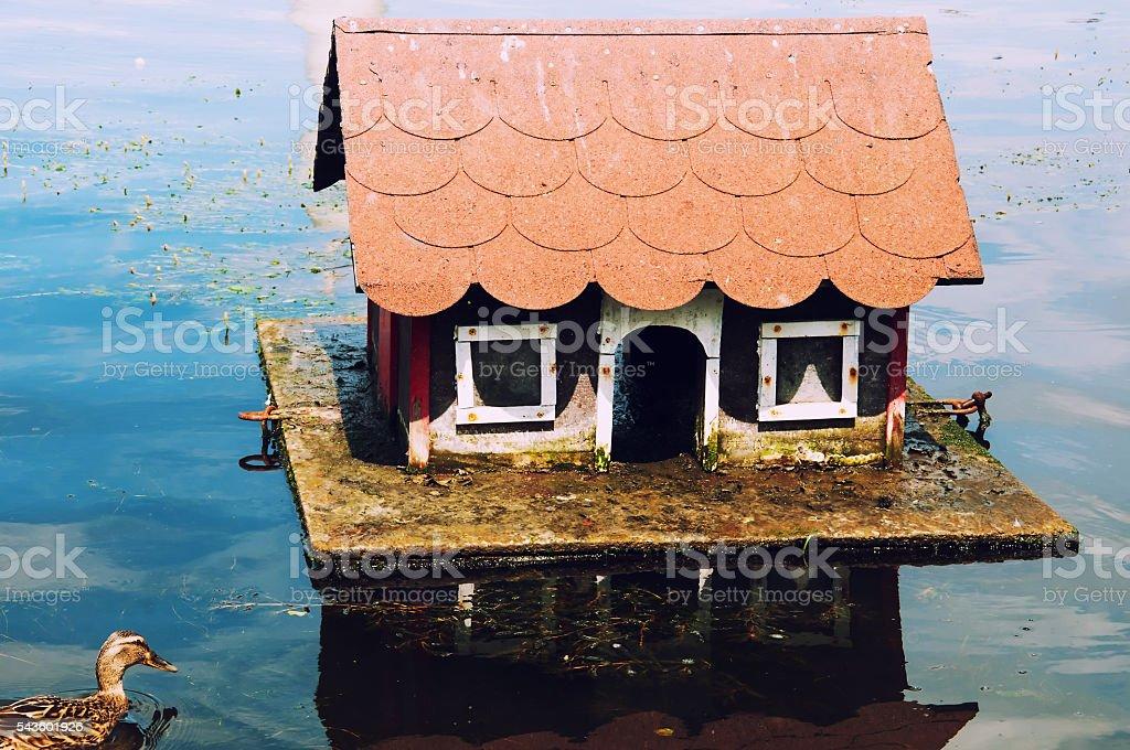 Lovely house for ducks stock photo
