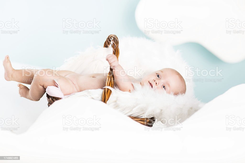 Lovely little baby royalty-free stock photo
