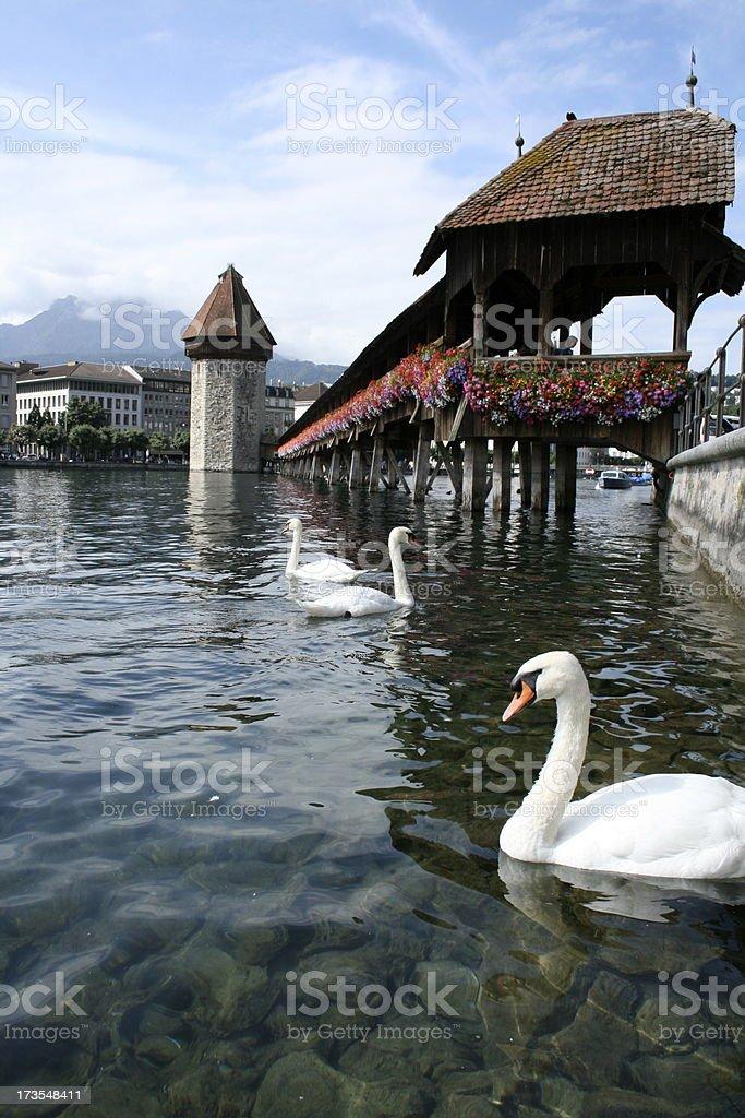 Lovely Luzern stock photo