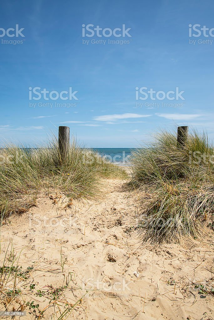 Lovely sand dunes and beach landscape on sunny Summer day stock photo