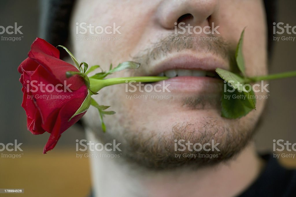 Lover Boy royalty-free stock photo