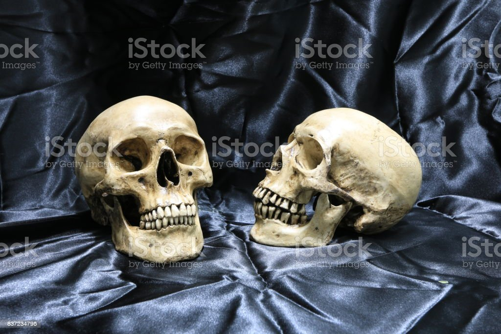 Lover of skull on black fabric with texture in the cemetery in night time. stock photo