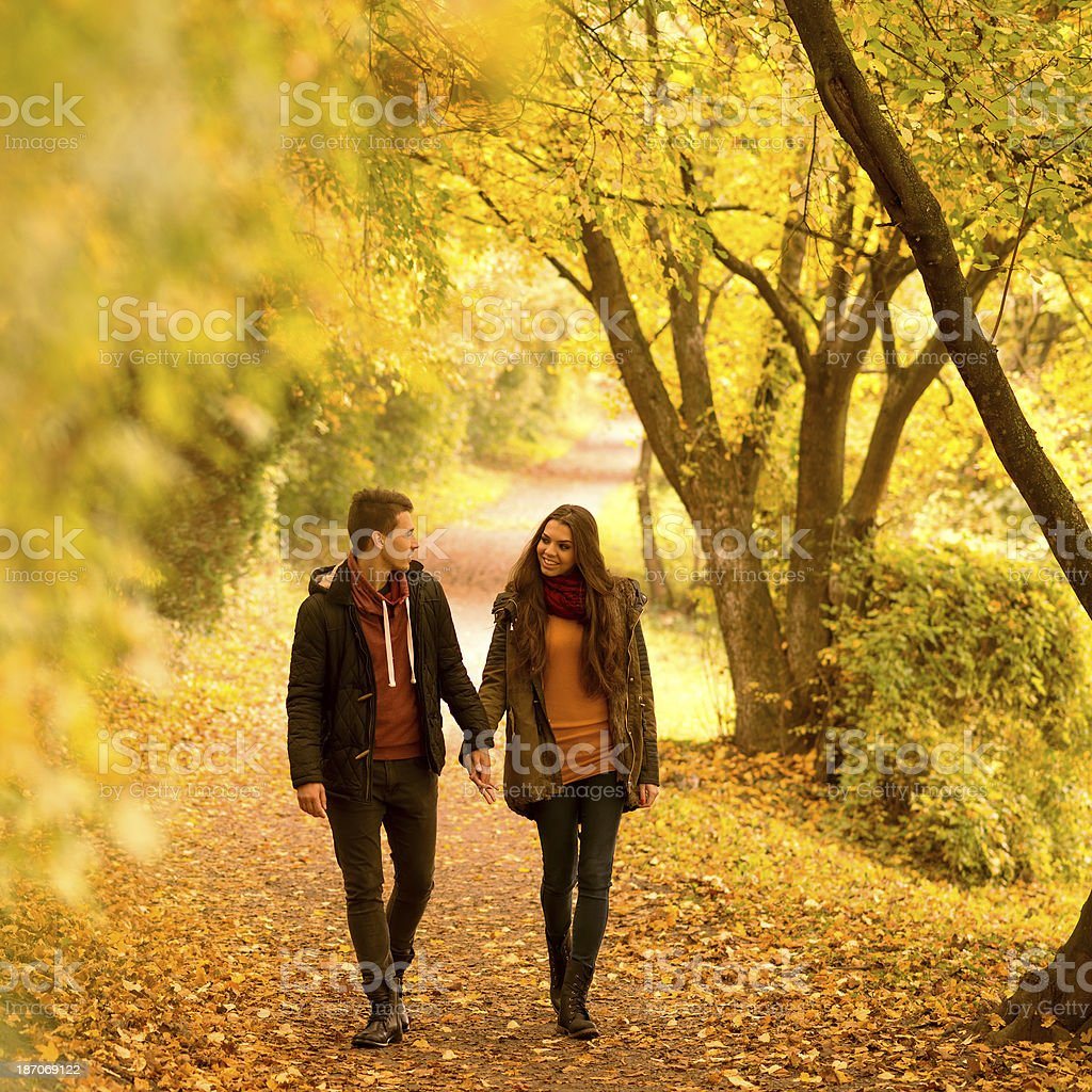 Lovers walking holding hands  in autumn park stock photo