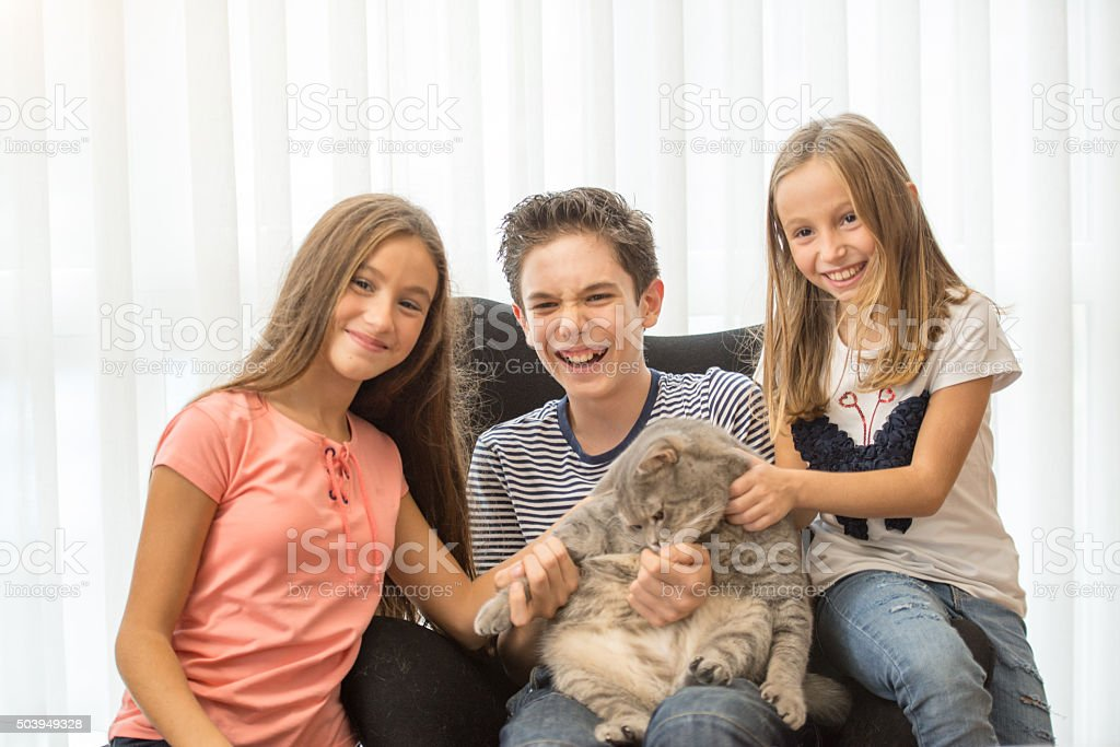 loves cat stock photo