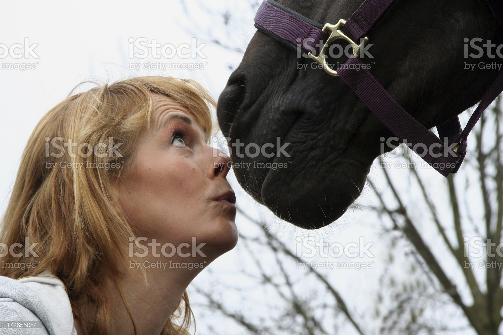 Loving your horse 6 royalty-free stock photo
