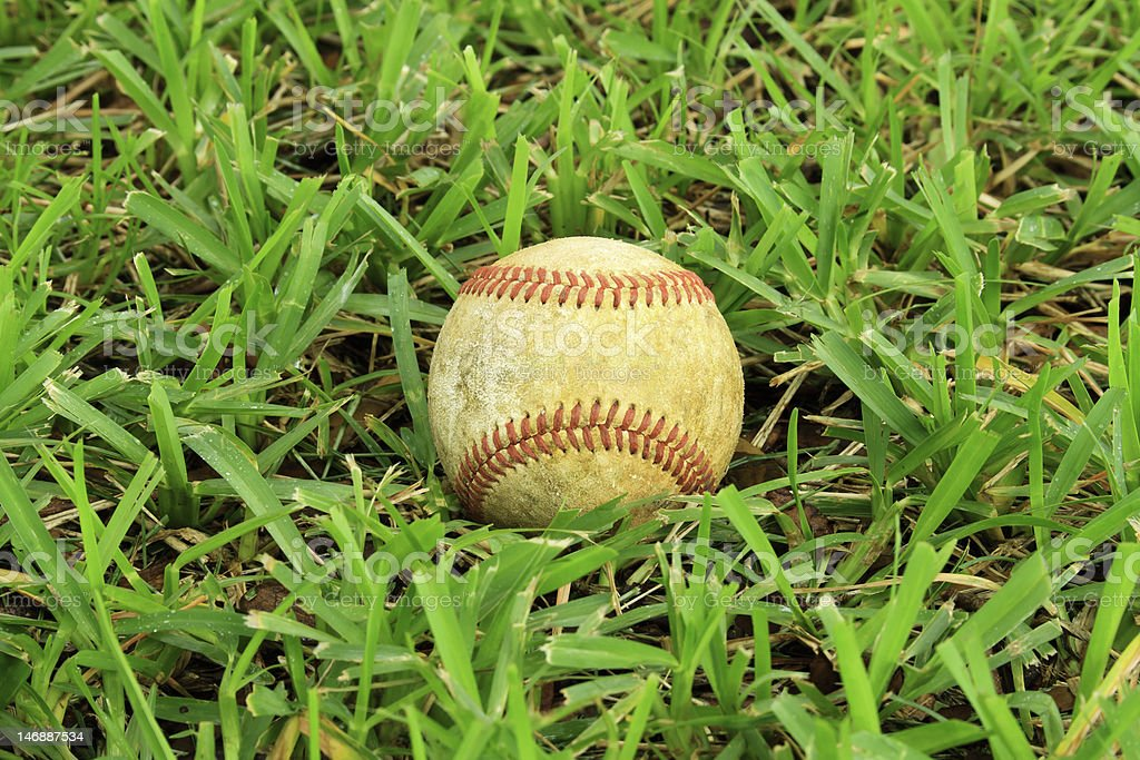 Low Angle Baseball In Grass stock photo