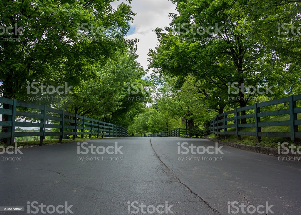 Low Angle of Fence Lined Road stock photo
