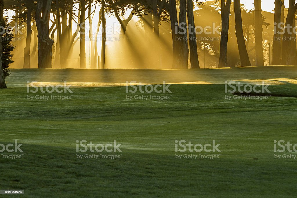 Low angle shot of a golf course at sunrise stock photo