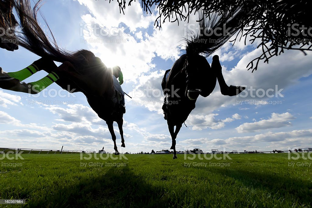 Low angle view Horse Racing Steeplechase jumping royalty-free stock photo
