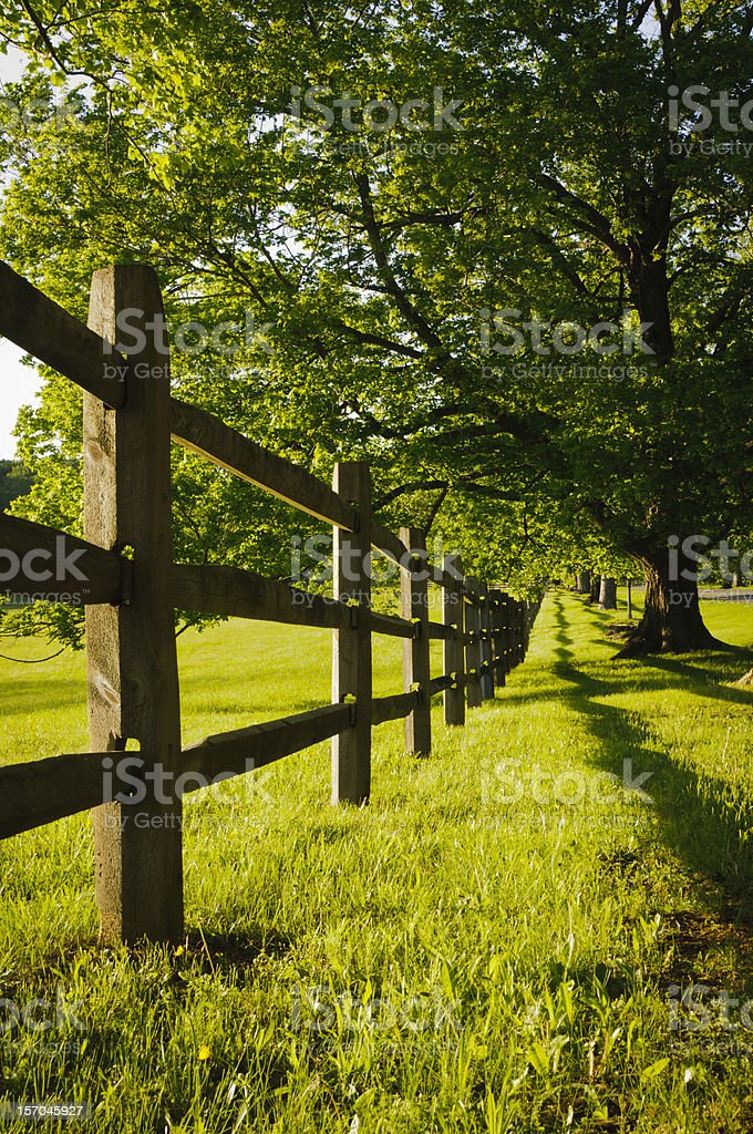 Low angle view of a farm fence royalty-free stock photo