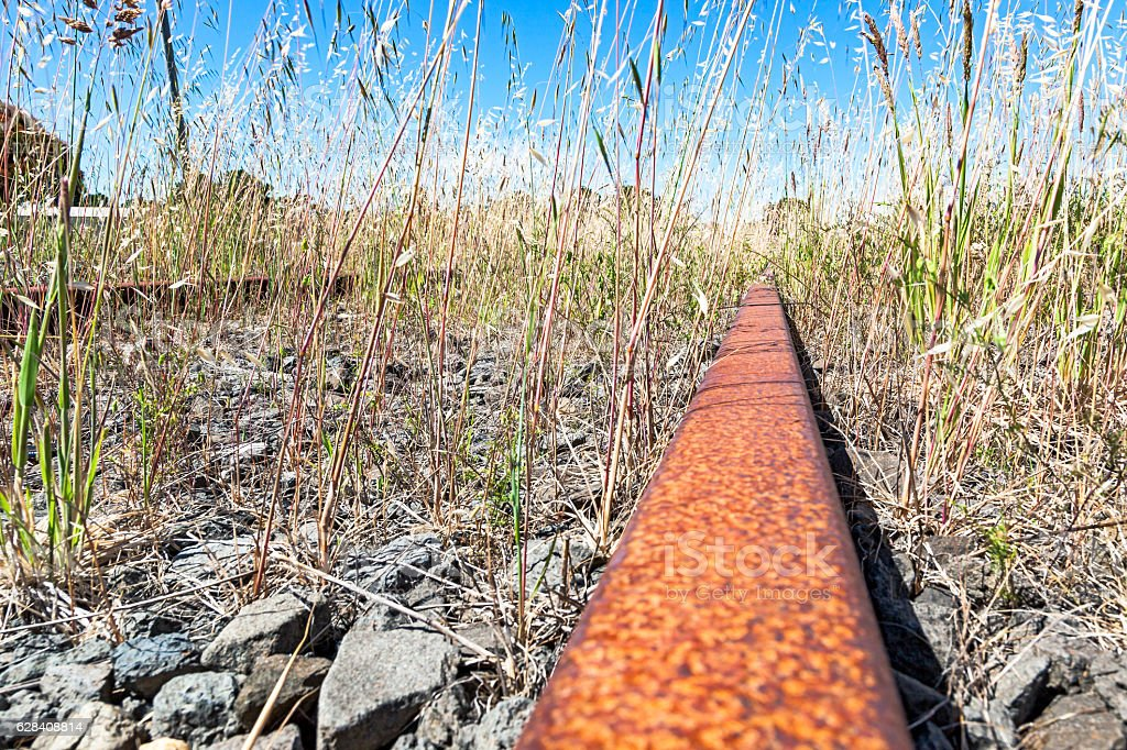 Low angle view of rusty, abandoned, overgrown railway track stock photo