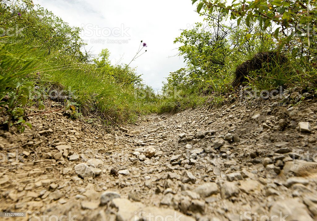 Low angle view of stony path for downhill mountain biking. stock photo