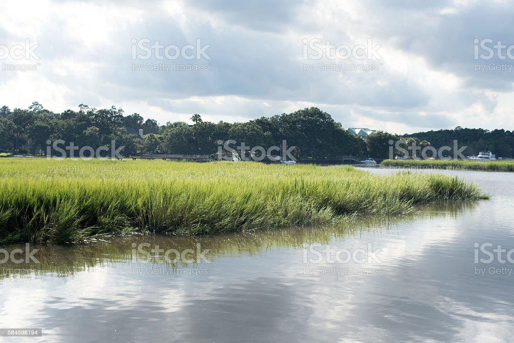 Low Country stock photo