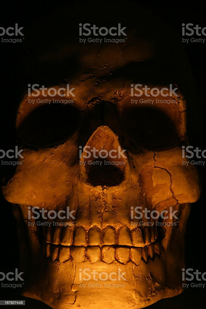 Low key skull stock photo