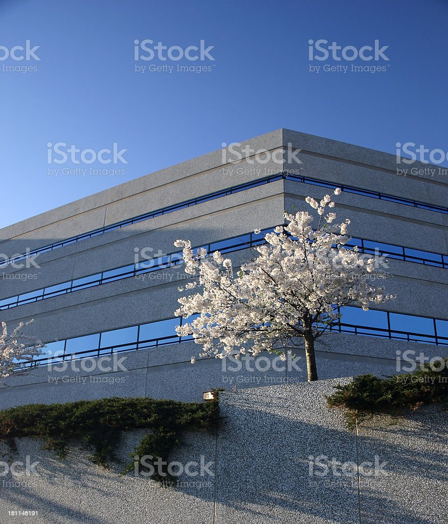 Low Office Building royalty-free stock photo