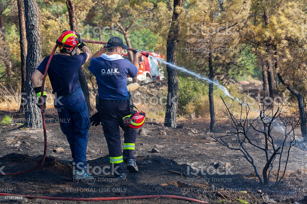 Low scale fire at a Seich Sou forest, Thessaloniki, Greece stock photo