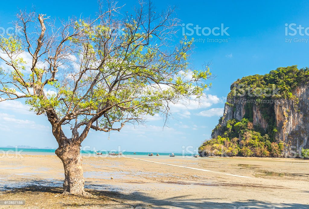 low tide at East Railay beach stock photo
