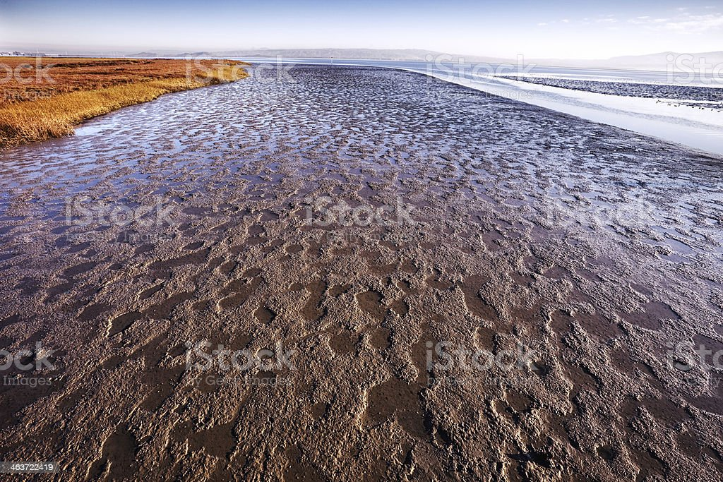 Low Tide at San Francisco Bay royalty-free stock photo