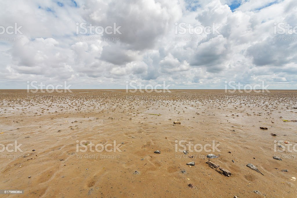 Low tide at the Dutch Wadden Islands stock photo