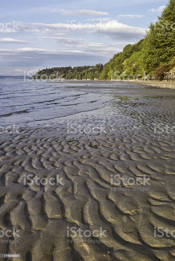 Tidal Pattern in the Sand royalty-free stock photo
