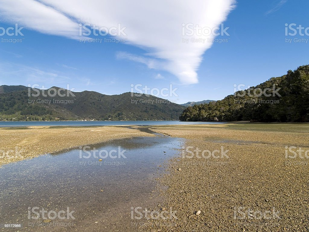 Low tide in Queen Charlotte Sound, New Zealand stock photo