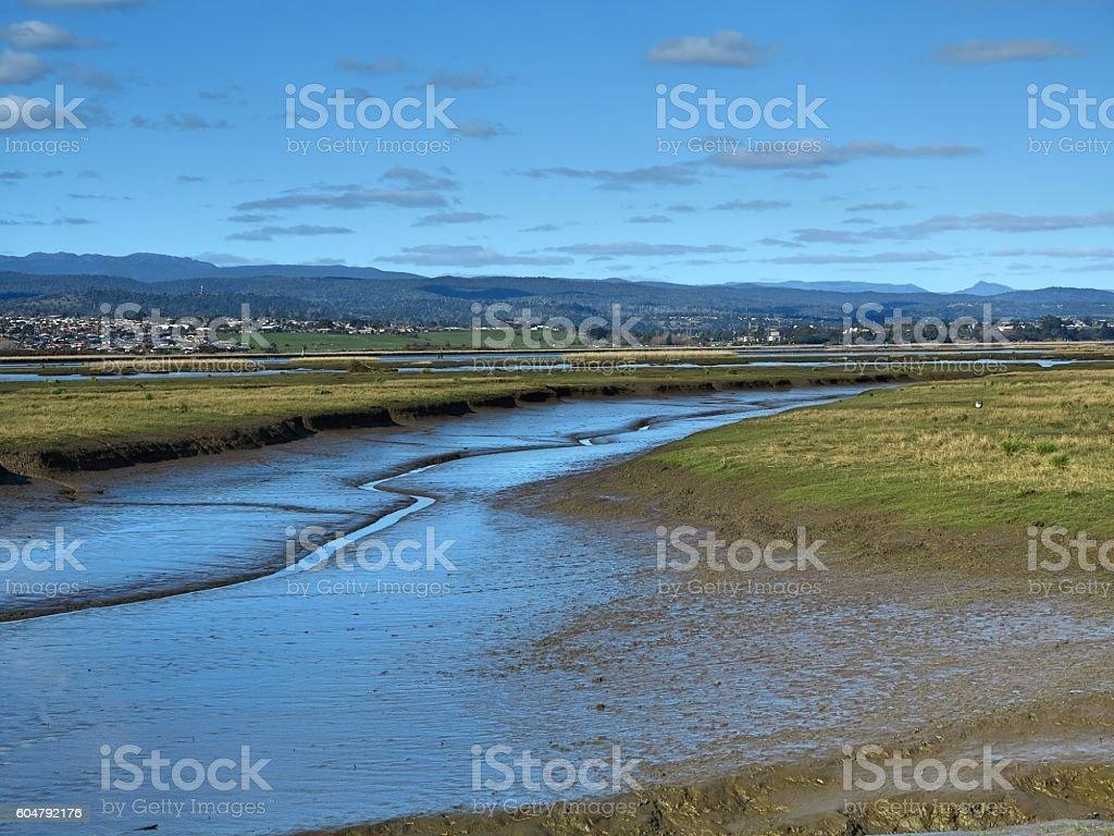 Low tide in Tamar Island stock photo