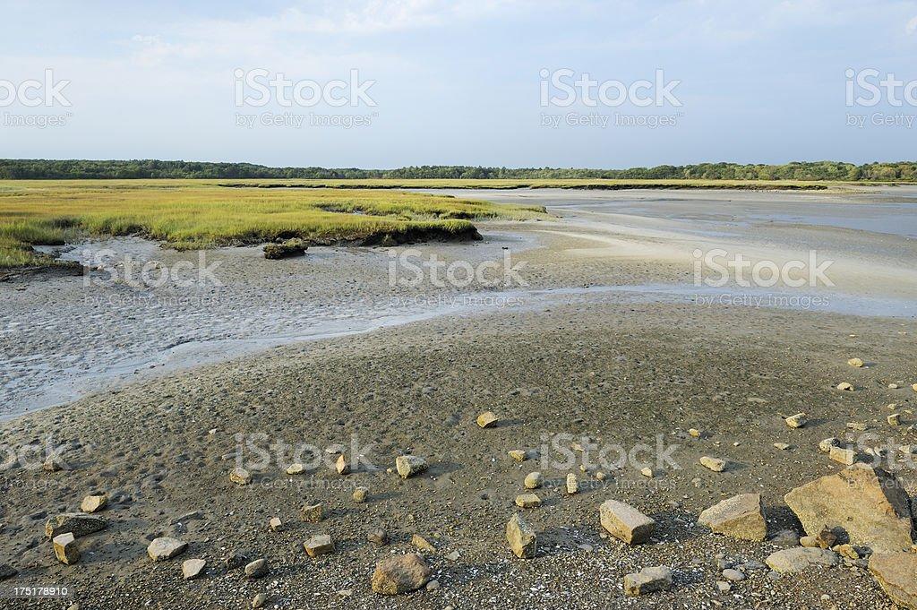 Low tide landscape stock photo