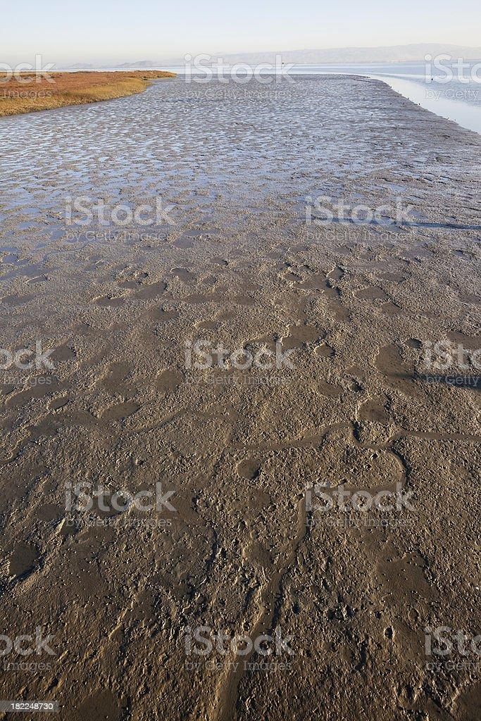 Low Tide Mud at San Francisco Bay royalty-free stock photo